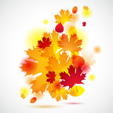 Autumn background with yellow leaves. Vector Stock Photos