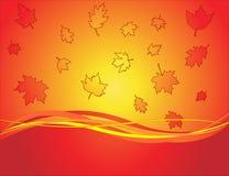 Autumn backgrounds royalty free stock photo