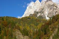 Autumn backgrounds Stock Photo