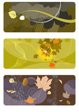 Autumn backgrounds set_2. Autumn backgrounds, abstract set for design Stock Illustration
