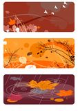Autumn backgrounds set Royalty Free Stock Photos