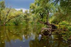 Autumn backwater reflection Stock Images