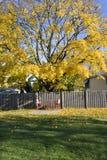 Autumn on the backyard. Vertical Royalty Free Stock Photos