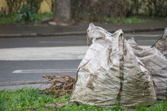 Autumn - Bag of Leaves Royalty Free Stock Images