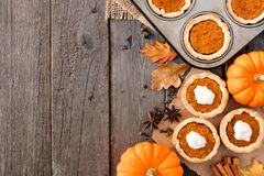 Autumn baking side border with pumpkin tarts over wood Stock Photography