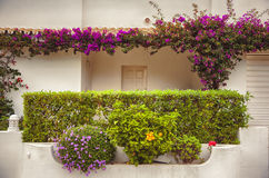 Autumn balcony in Portugal Royalty Free Stock Photography