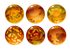 Autumn balls Stock Photography