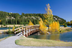 Autumn in Banff National Park. Alberta, Canada. Beautiful landscape with yellow trees and wooden bridge across the river Royalty Free Stock Images