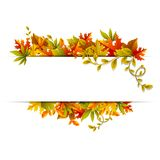 Autumn Banner Stock Photography