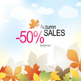 Autumn banner. With bright leaves Royalty Free Stock Images
