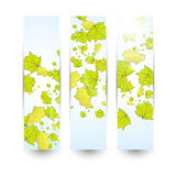 Autumn banner Royalty Free Stock Photo