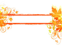 Autumn banner. With leaves and florals Stock Photos