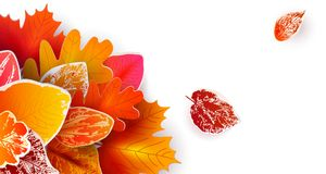 Autumn Banner avec les feuilles de papier Photo stock