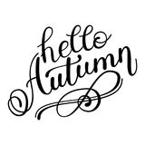 Autumn banner background with paper fall leaves. Royalty Free Stock Photo