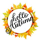 Autumn banner background with paper fall leaves. Royalty Free Stock Photography