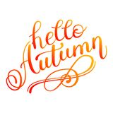 Autumn banner background with paper fall leaves. Stock Images