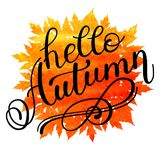 Autumn banner background with paper fall leaves. Stock Photos