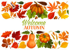 Autumn banner with border of fall leaf, pumpkin vector illustration
