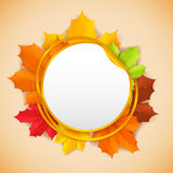 Autumn banner. Stock Image