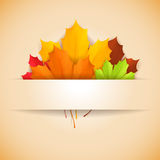 Autumn banner. Royalty Free Stock Image