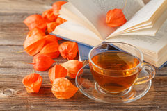 Autumn banner. dried physalis on a light wooden background. Royalty Free Stock Image