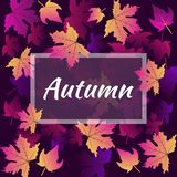 Hello autumn leaf background of seamless texture of colorful autumn leave vector illustration. vector illustration