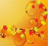 Autumn banner with leaves Royalty Free Stock Image