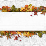 Autumn banner with leaves on a textural background Stock Images