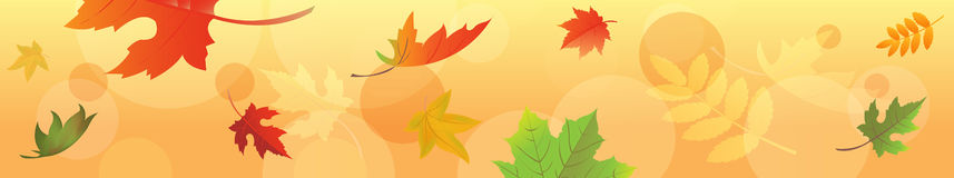 Autumn Banner With Leaves. Vector Royalty Free Stock Image