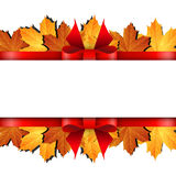 Autumn banner with maple leaf and red bow Stock Photography