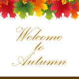 Autumn banner from maple leaves with text. Welcome to Autumn stock illustration