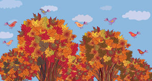 Autumn banner with maple trees Stock Photography