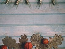 Autumn banner. Pumpkin, dried oak leaves and physalis. Autumn banner. Pumpkin, dried oak leaves and physalis on a light wooden background Royalty Free Stock Image