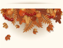Autumn banner Royalty Free Stock Images