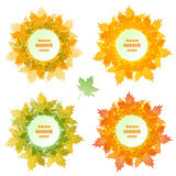 Autumn banner vector.. Bright banners of autumn maple leaves in green, red, yellow colors. Watercolor effect. Funny labels, tickets, cards, stickers Stock Photo