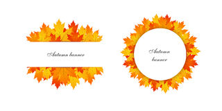 Autumn banner white Stock Photos