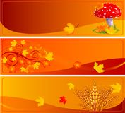 Autumn banners Stock Photo