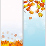 Autumn Banners Foto de Stock Royalty Free