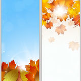 Autumn Banners. Abstract autumn nature banners with leaves and lights Royalty Free Stock Images
