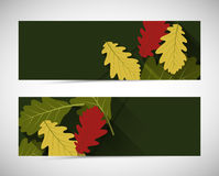 Autumn banners. Autumn abstract banners with oak leafs Stock Image
