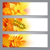 Autumn banners Stock Photography