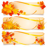 Autumn banners. Collection of three autumn banners decorated with leaves Royalty Free Stock Photos