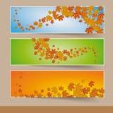 Autumn Banners coloré par trois Photos stock
