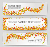 Autumn banners. Colorful autumn banners illustration collection Stock Image