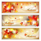Autumn Banners com folha Foto de Stock Royalty Free