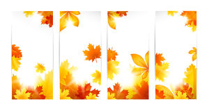 Autumn banners with leaves Stock Images