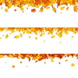 Autumn banners with orange leaves. Autumn banners set with golden maple and oak leaves. Vector illustration Royalty Free Stock Images