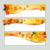 Autumn banners with orange leaves. Autumn banners with yellow and orange leaves. Vector illustration Royalty Free Stock Photography