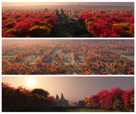 Autumn Banners Set. Set of elegant autumn banners with highly detailed natural environments Royalty Free Stock Images