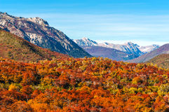 Autumn in Bariloche, Argentina Royalty Free Stock Images